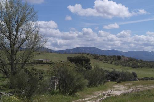 Zonas rurales 7