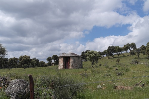 Zonas rurales 8