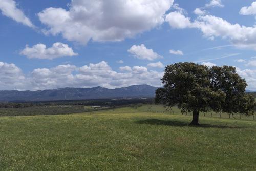 Zonas rurales 9