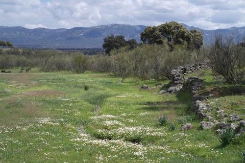 Zonas rurales 10