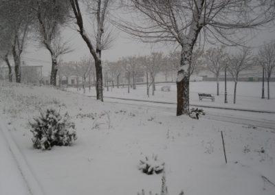Conquista nevada 1