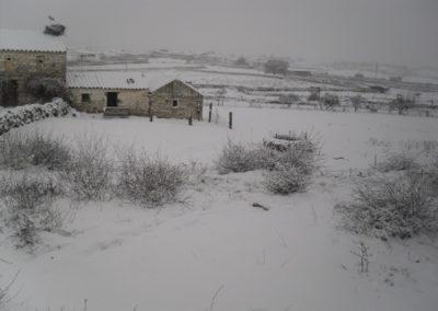 Conquista nevada 4