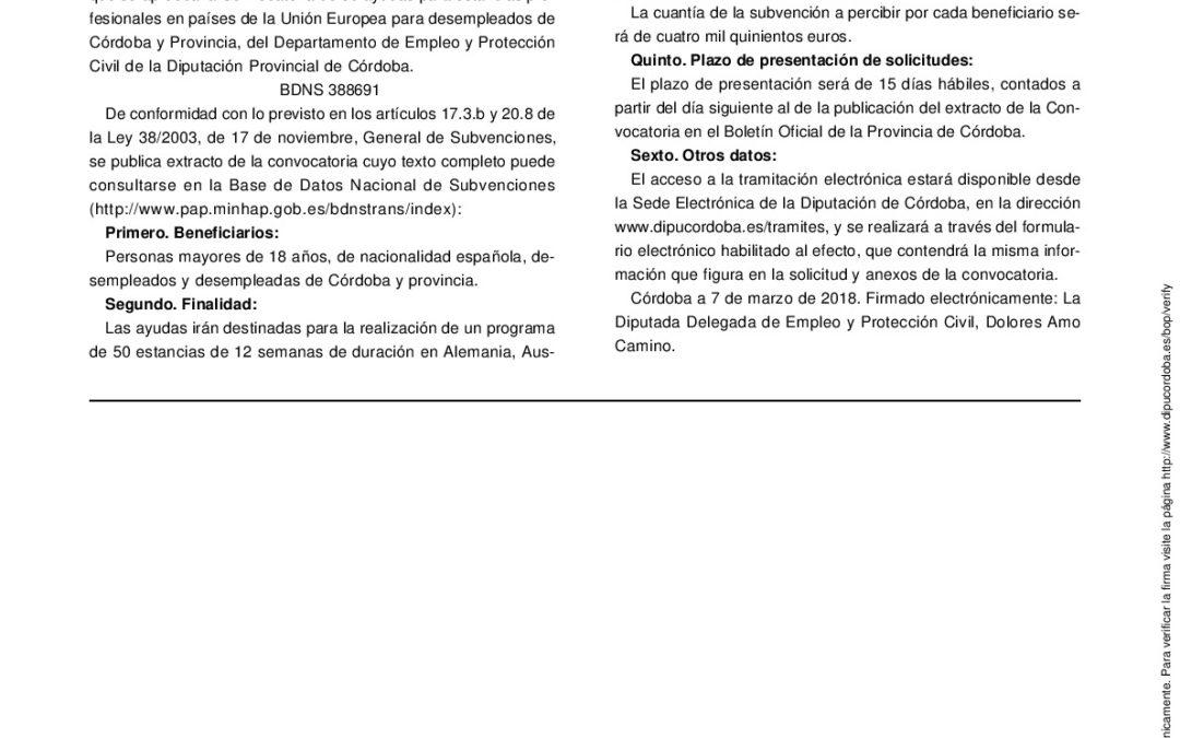 DIPUTACIÓN CONVOCA AYUDAS PARA ESTANCIAS PROFESIONALES DE DESEMPLEADOS EN PAÍSES DE LA UE 1