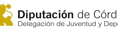 Recibida Subvención Diputación para Programa OCIO Y TIEMPO LIBRE 2018