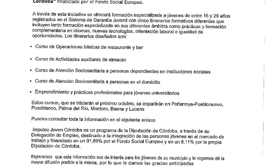 Programa IMPULSO JOVEN Diputación Ofrece Formación a los Jóvenes de la Provincia 1