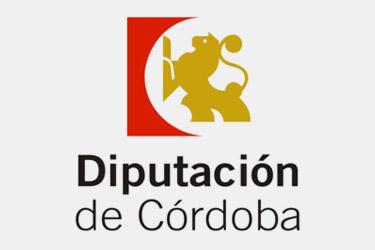 PROGRAMA ANUAL DE CONCERTACIÓN Y EMPLEO DE DIPUTACIÓN, 2020. RESUMEN EJECUCIÓN DE LÍNEAS.